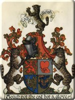 Official Emblazonment of Arms of the 29th Chief of Mackintosh